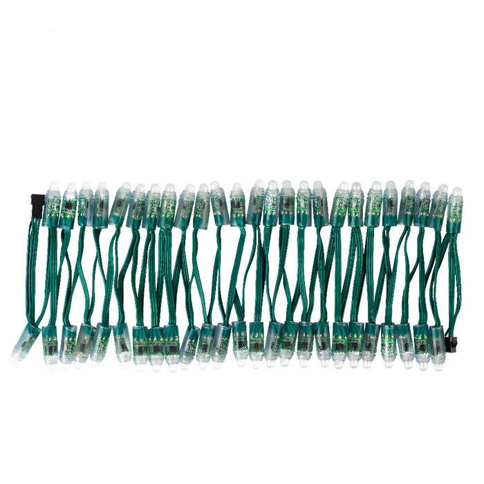 WS2811 DC5V/12V 12mm LED Module String Addressable