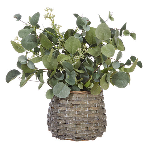Eucalyptus in Basket