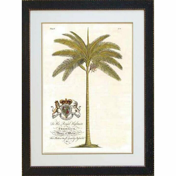Royal Palm 4 - Black