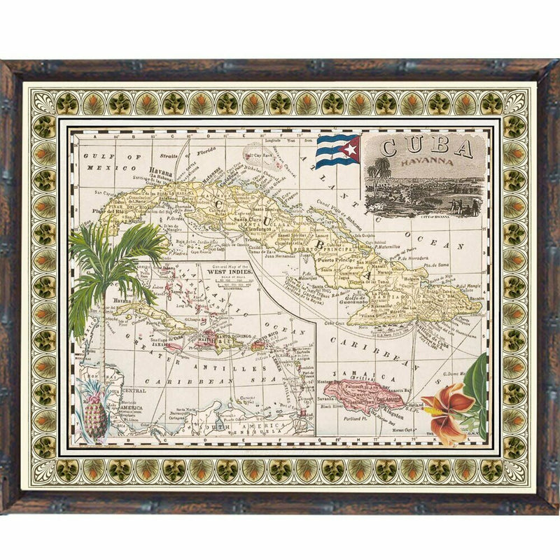 Tropical Antique Map 4