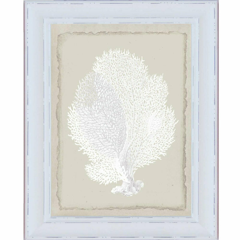 Hamptons White Coral Series 2