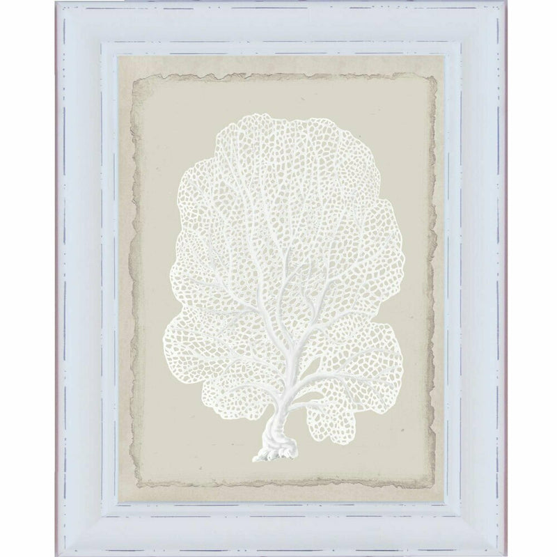 Hamptons White Coral Series 3
