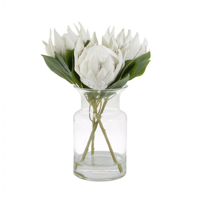 Giant Proteas with Glass Vase - White