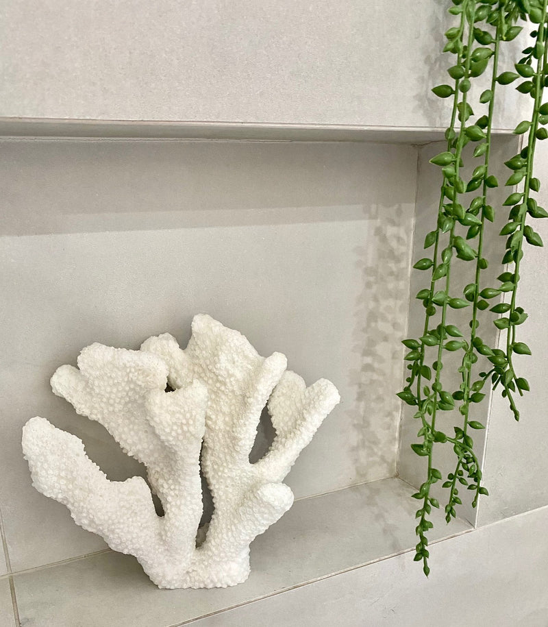 Horn Coral Interior Collections