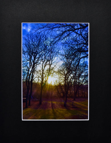 Sunset Matted 8x10 Picture