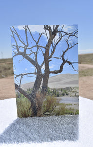 Blank Greeting Card With Fine Art From Breathtaking Moments