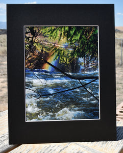 Rainbow Waterfall with Trees Landscape Fine Art Photography 11x14 Matted Print
