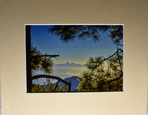 Arizona Mountain Sunset Surrounded by Trees Landscape Fine Art Photography 8x10 Matted Print