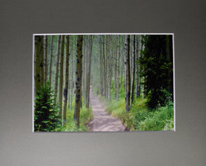 """The Road Less Traveled"" Road through the woods Fine Art Photography Matted Picture 8x10"