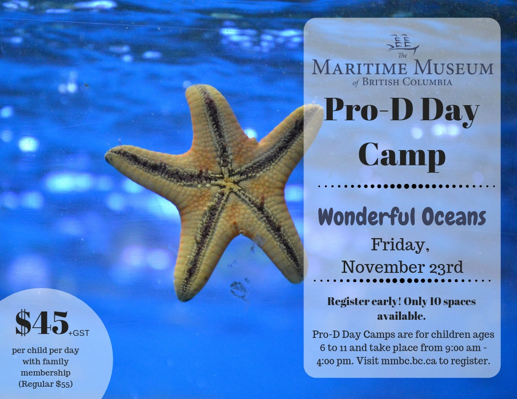 Program: Kids Pro-D Day Camp (Friday, November 23)