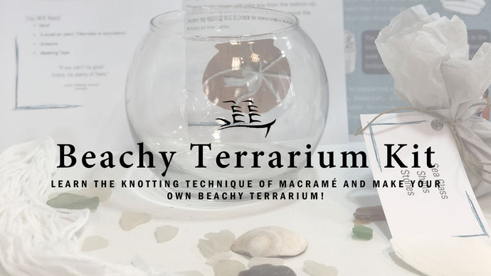 Beachy Terrarium Kit