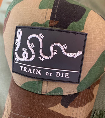 Train or Die patch