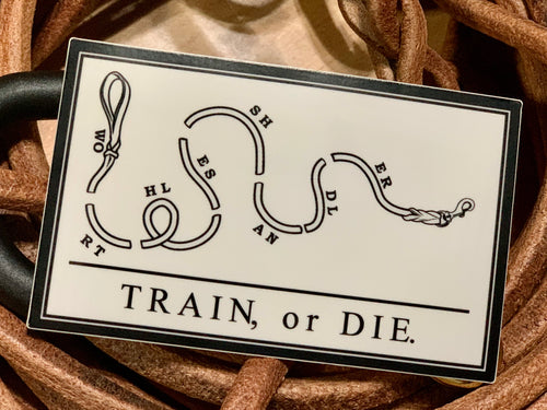 Train or Die Sticker