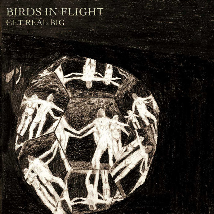 Birds In Flight - Get Real Big MRLP35