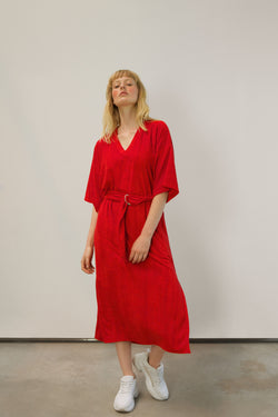 RED REBELLE VELVET DRESS