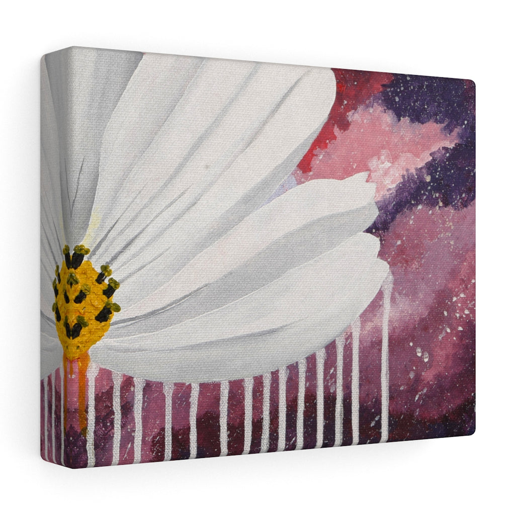 Cosmos in the Pink Sky Stretched canvas