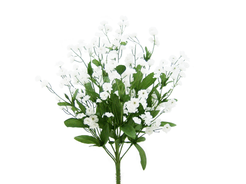 Color Fast Double Baby Breath X 11 H19 White
