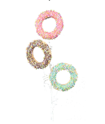 Doughnut Spray x3