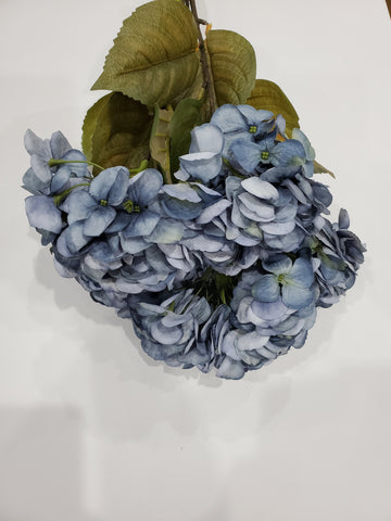 DRY LOOK HYDRANGEA BUSH X5 H22 BLUE