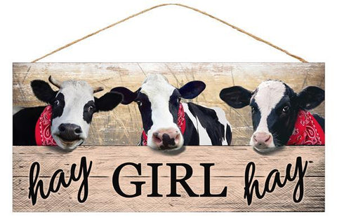 12X6 HEY GIRL HEY SIGN