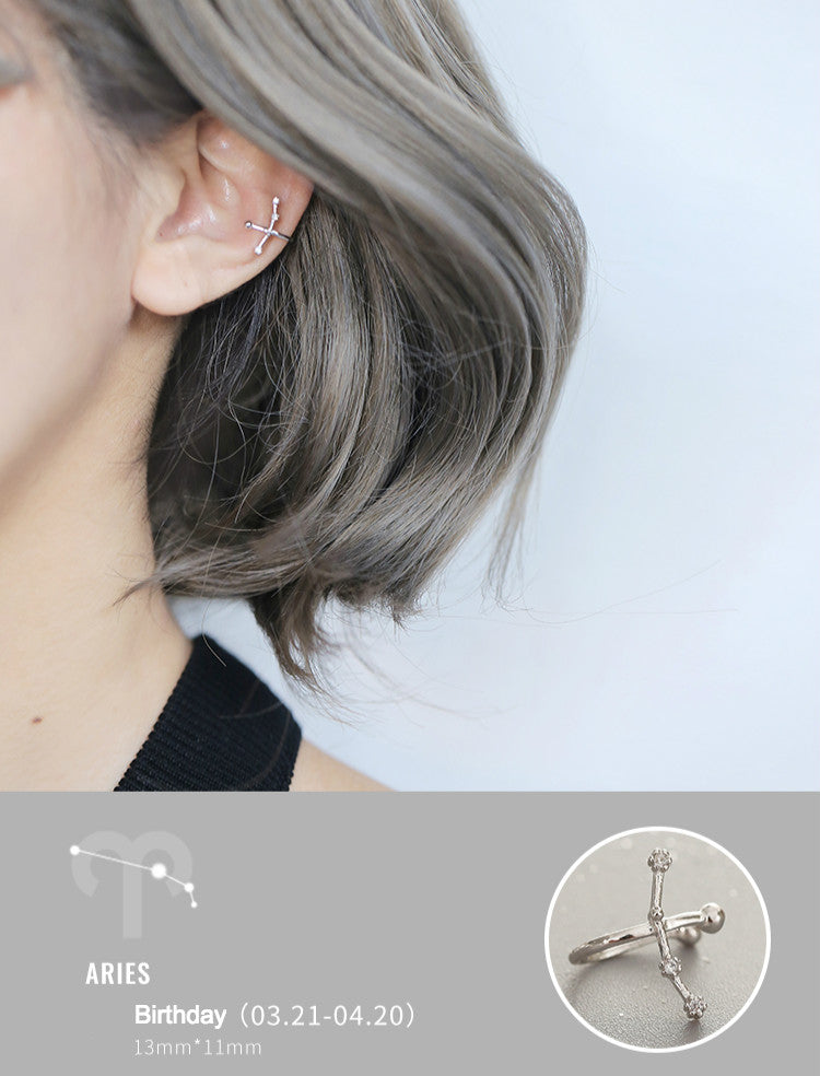 12 Zodiac Ear Pins (Sterling Silver)