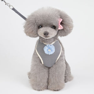New summer light patterned pet harness with soft leash for dogs and cats