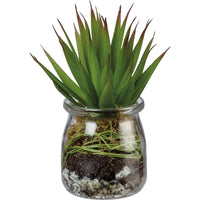 Glass Jar with Faux Aloe Succulent