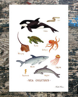 Sea Creatures Field Guide Watercolor Print by Kate Dolamore