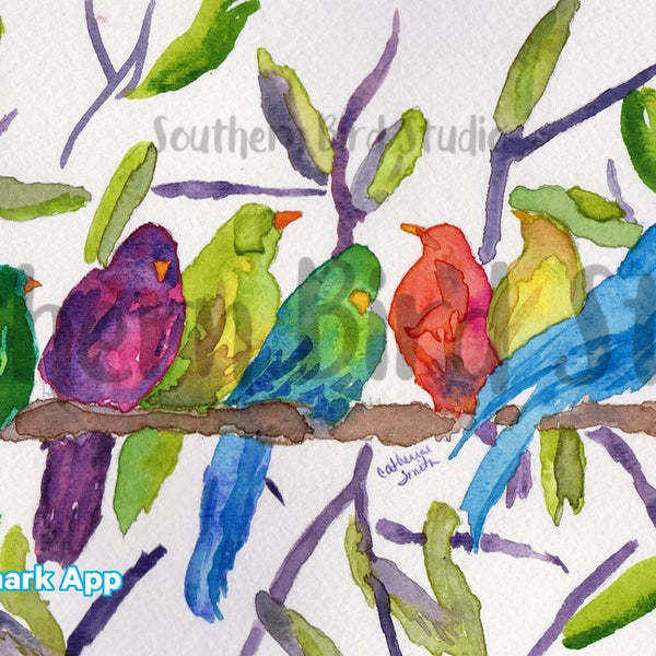 Birds of a Feather Boxed Note Card Set