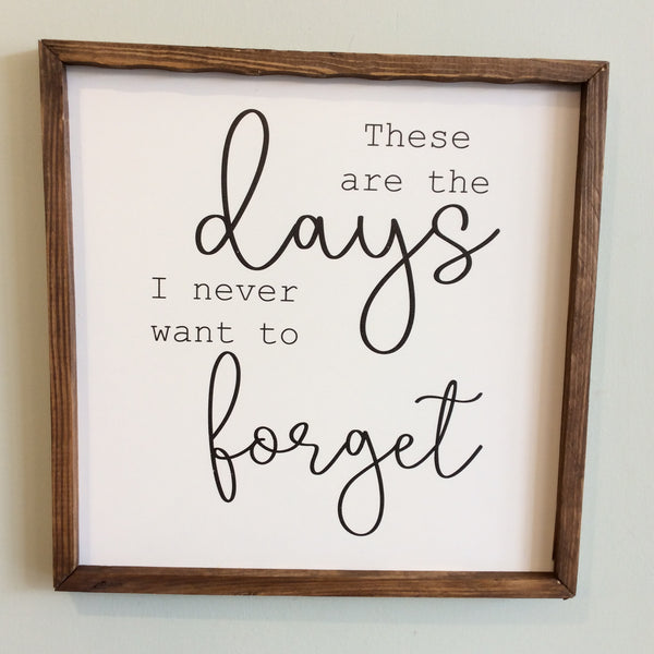 These Are The Days Large Square Framed Wood Sign