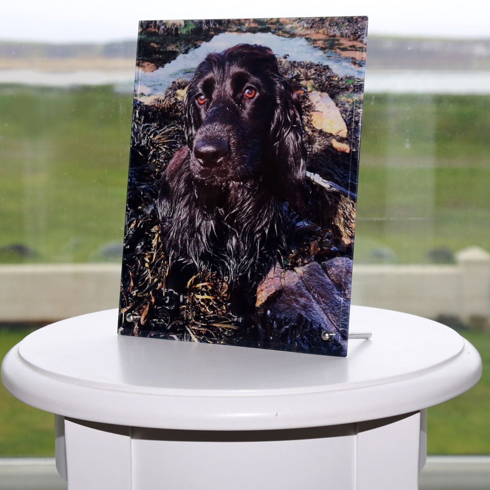 "Free Standing Glass Photo Print (8""x10"") Portrait - Personalised Photo On Glass"