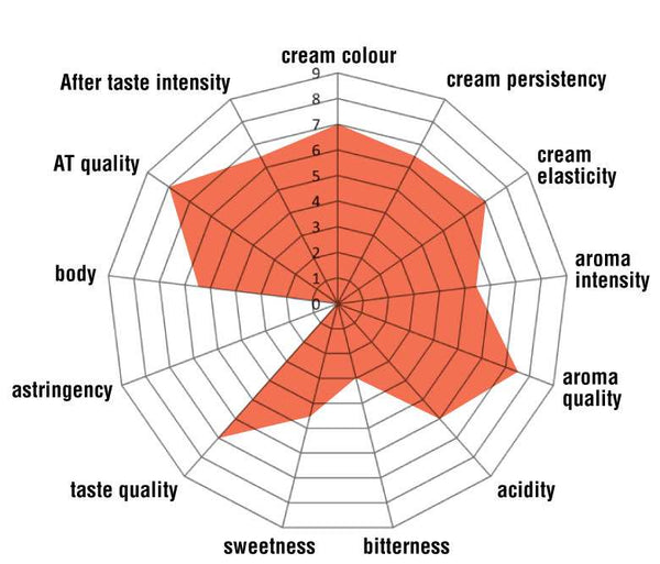 Mokaflor image explaining the taste of the Nero blend which looks like a spiders web