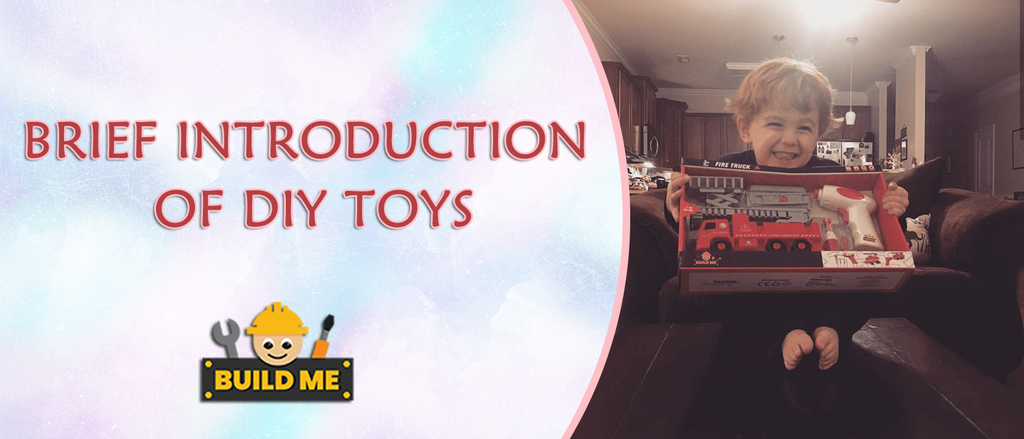 Brief Introduction about DIY Toys