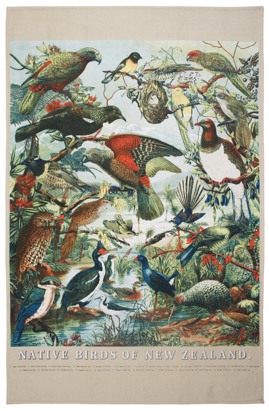 Teatowel Native Birds of NZ Prestige