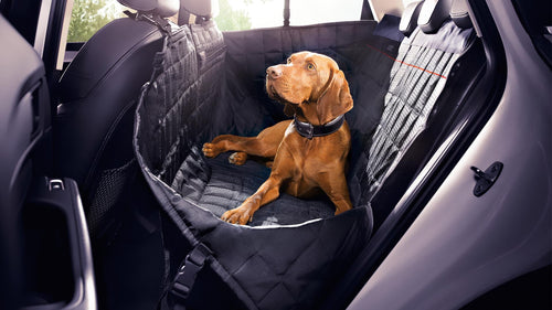 Rear Seat Protective Pet Blanket