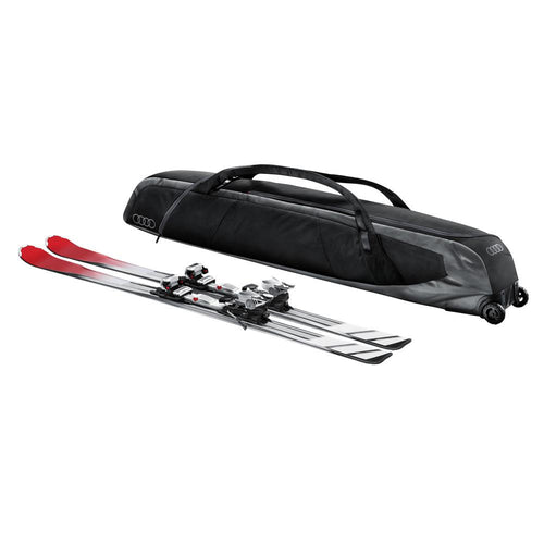 Ski Storage/Carrying Bag