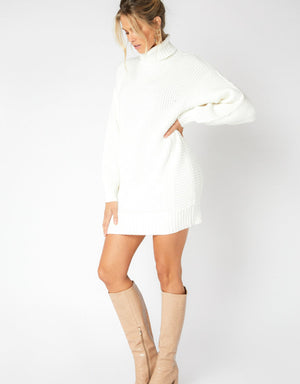 Echoes Knit Sweater Dress