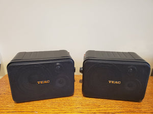 TEAC LS-X700 In/Outdoor Speakers