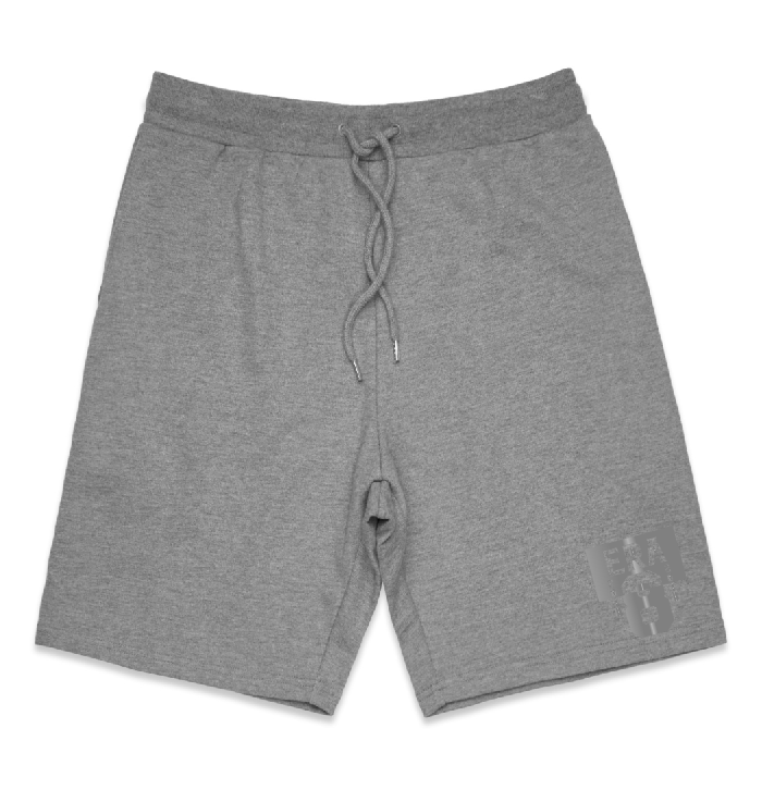 ERA 8 3M Silver - Men's Midweight Fleece Shorts (GREY)