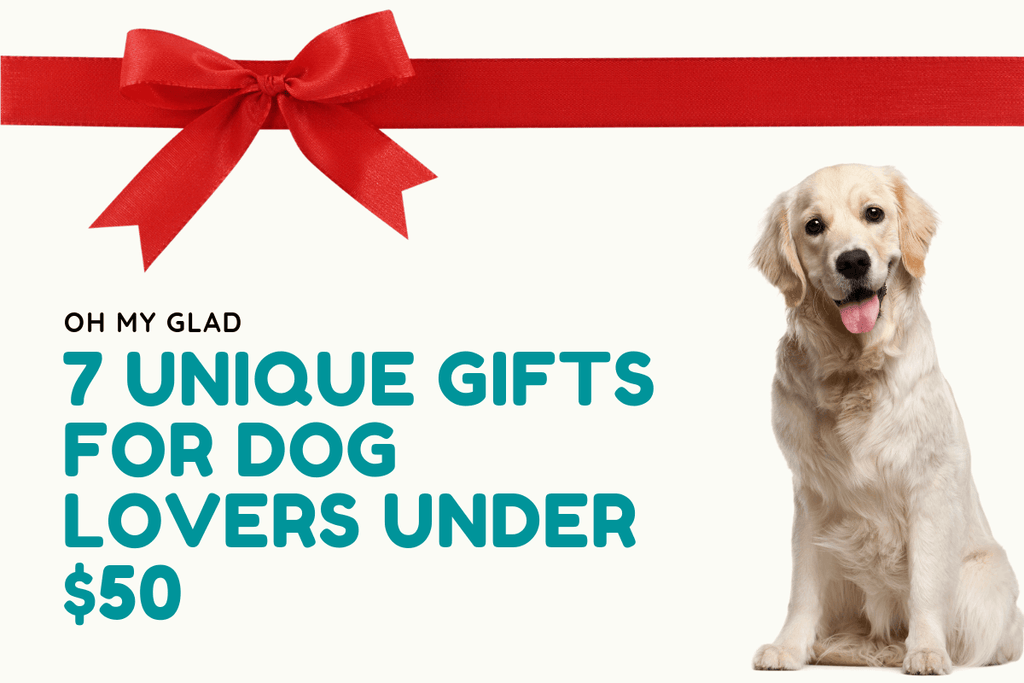 7 Unique Gifts for Dog Lovers Under $50