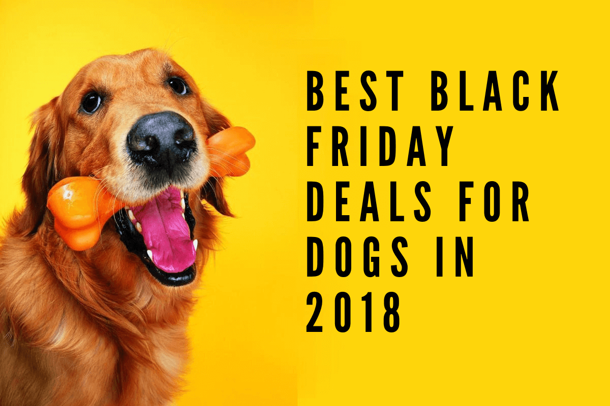 Best Black Friday Deals for Dogs in 2019