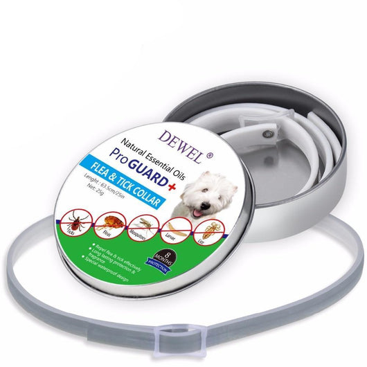 Anti Flea Tick Dog Collar Dog Collars Oh My Glad