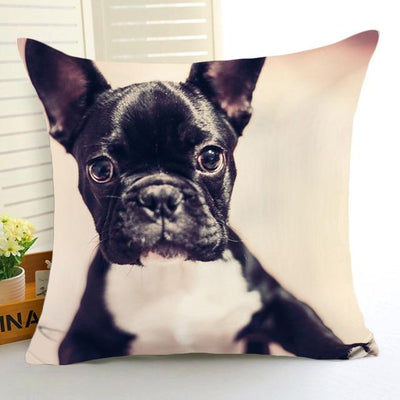 Cute Dog Pillows Covers - Ohmyglad