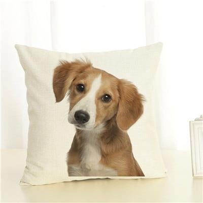 Decorative Pillow Cover - Ohmyglad