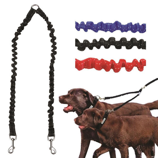 Double Elastic Dog Leash - Ohmyglad