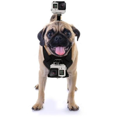 GoPro Dog Harness Mount - Ohmyglad