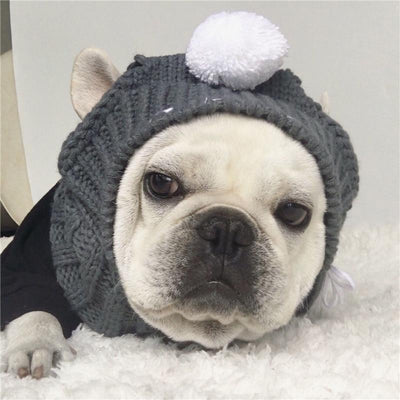 Handmade Winter Hats For Dogs - Ohmyglad