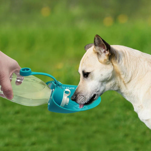 Portable Water Dispenser For Dogs - Ohmyglad