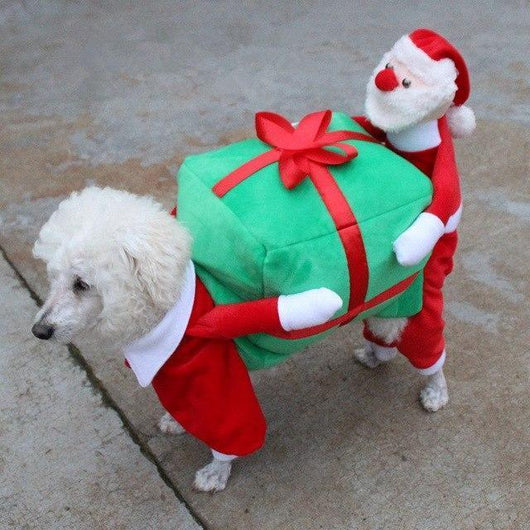 Santa Claus Dog Outfit - Ohmyglad