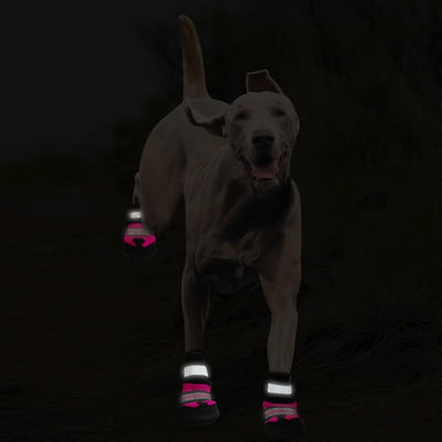 Snow Boots For Dogs - Ohmyglad